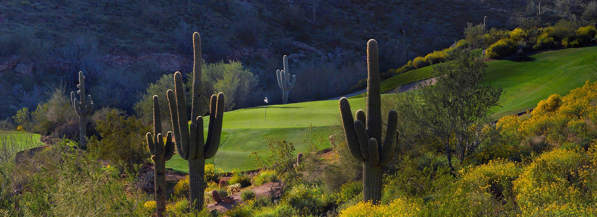 Statement from the Arizona Alliance for Golf